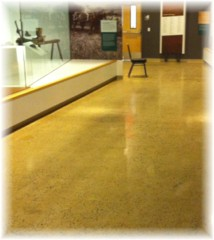 polished concrete in Allentown