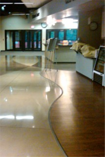 concrete polishing chicago