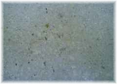 cleaning grease and oil from concrete coating